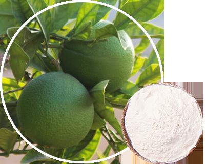 橙皮甜苷(新甲基橙皮苷二氢查耳酮NHDC)