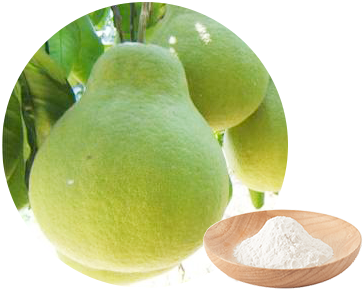 天然甜味剂:甜菊糖