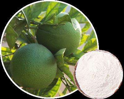 新橙皮苷二氢查耳酮--皮肤抗衰老机理及护理