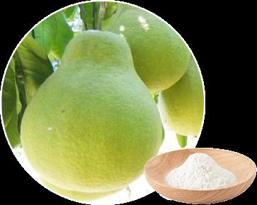 新橙皮苷二氢查耳酮的合成工艺